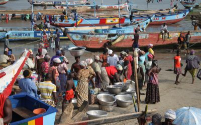 Small-Scale Fishermen and NGOs Call on the President of Ghana to End Saiko Fishing