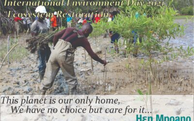 World Environment Day 2021:Ecosystem Restoration
